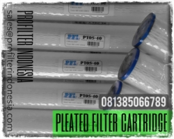 Pleated Polyester Cartridge Filter Indonesia  large