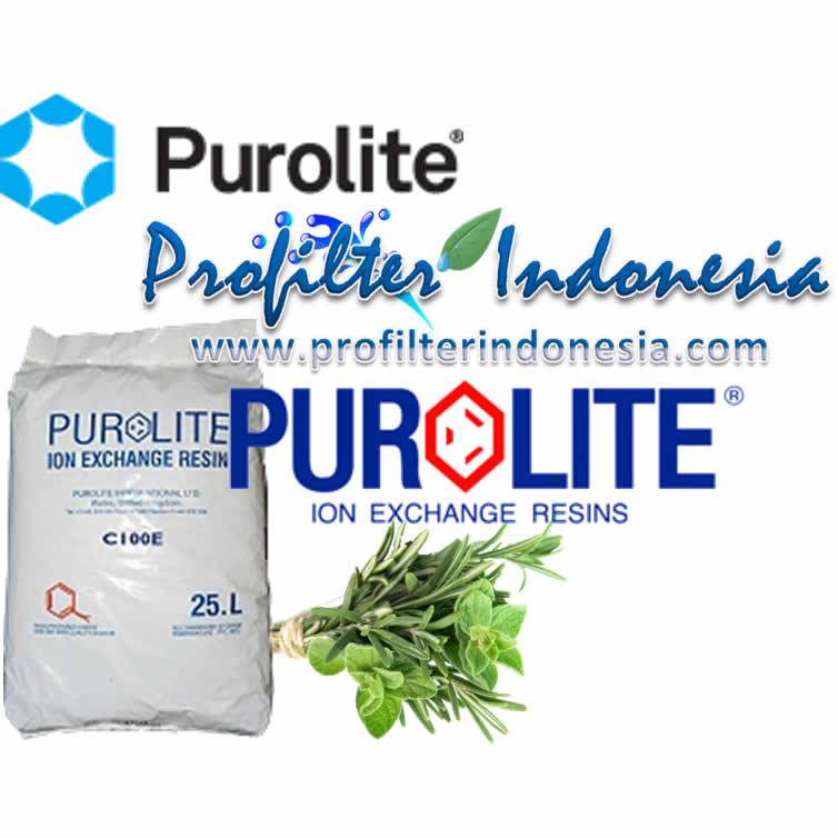 Purolite C100